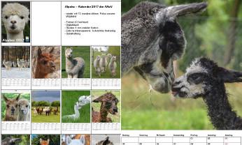AAeV Kalender 2017